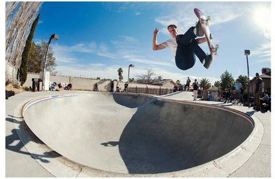 birdhouse skateboards review